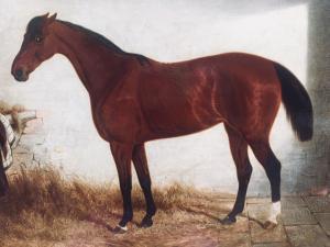 """Edwin Brown de Coventry (British Mancetter 1814 - 1891) """"Pur sang dans l'étable"""""""