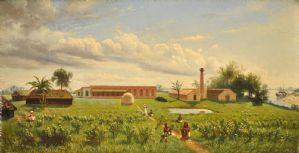 Ferme Gaddee à Bangala, 1876