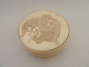 Box singes d'ivoire